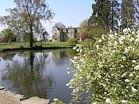 Fish pond, Chitlington