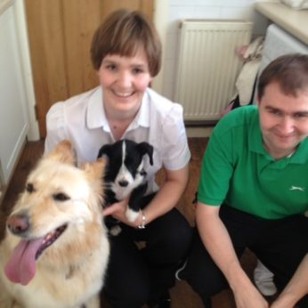 housesitters, housesitters UK, home owners with pets, pet owners, pet sitters