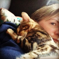 Photo from the pet-sitting blog -Amy cuddling a cat