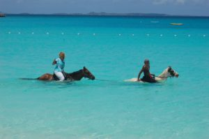 Horse back riding in Anguilla