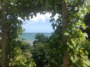 View of the sea from a Cornish housesit