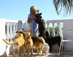 homeowner with six of her dogs on sunny terrace