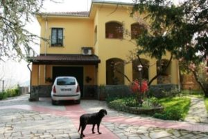 Well presented home looks occupied with car in drive and dog on path