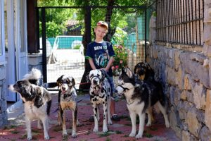 Our Son Makai house-sitting and walking a bundle of dogs!