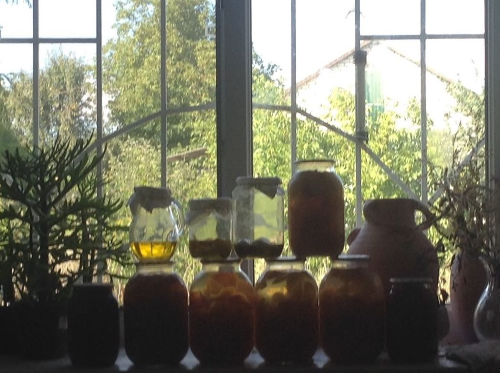 Long term house-sitting - organised preserve jars