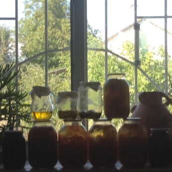 Long term house-sitting - organised preserve jars