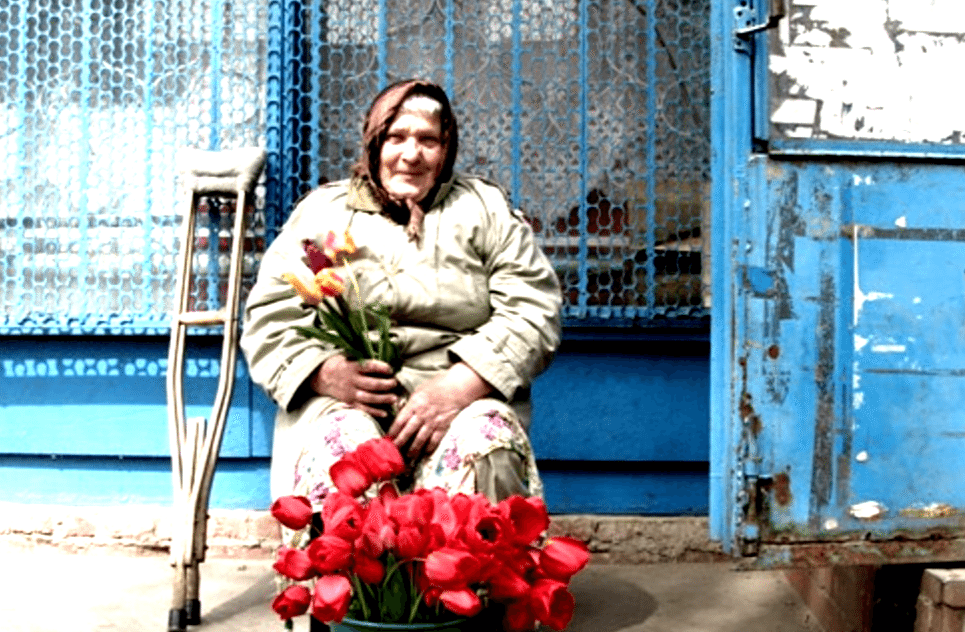 Babooshka selling flowers - long term housesitting