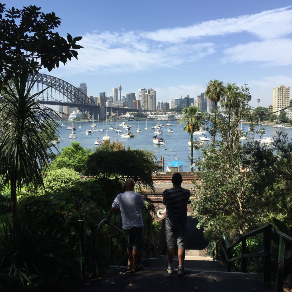 View of Sydney Harbour from a North shore garden