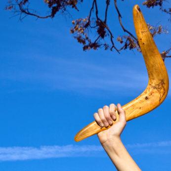 housesitting lifestyle and boomerang generation
