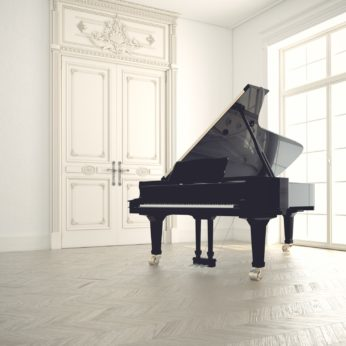 A grand piano in a classical apartment housesitting assignment