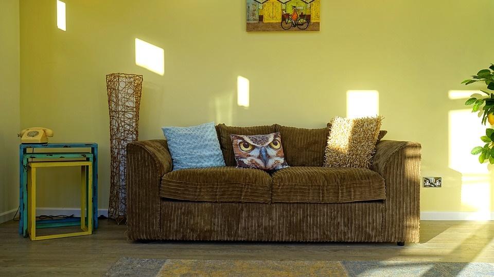 Living room freshly painted gree - housesitting home-maintenance