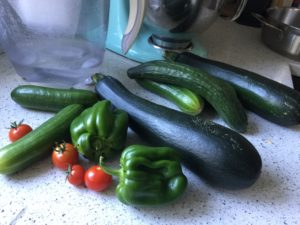 Vegetables harvested from the housesit garden