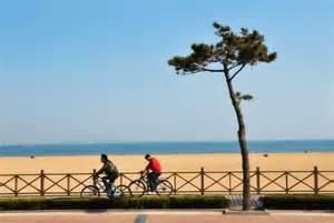 Housesitters needed near Golden Sand Beach Huangdao China