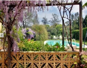 housesitting in Andalucia in a villa with pool