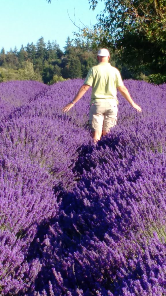walking in lavendar