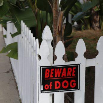 Prevent burglars