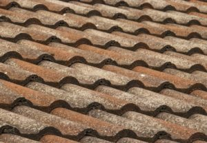 tile and roof maintenance