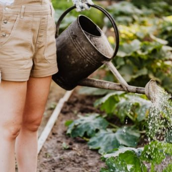 improve your home gardening