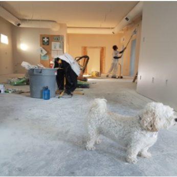 home needs renovation