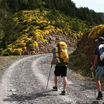 keen travellers