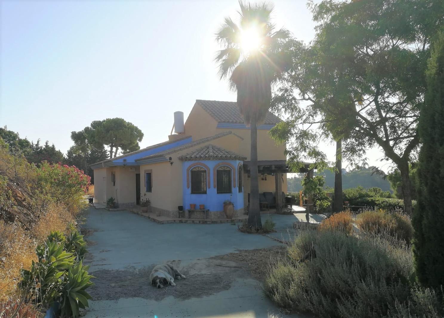 Long term housesitting 14 August - 14 November nr Estepona SPAIN 2